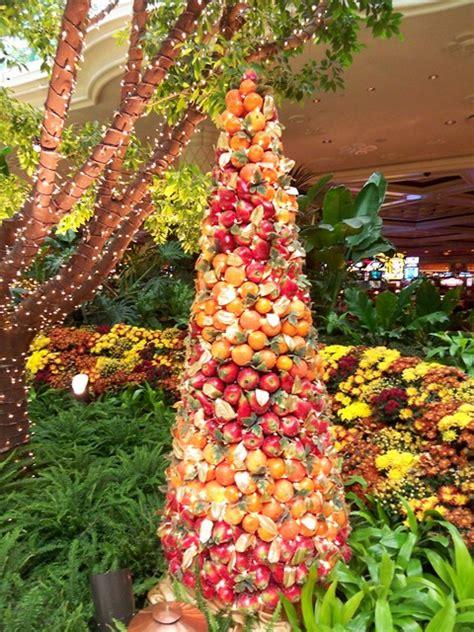 fruit trees las vegas las vegas decorating premiere home stagers