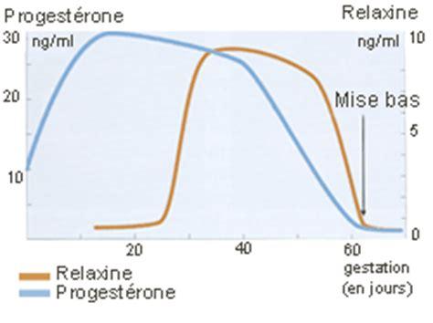 alimenti progesterone accueil le clos d attila eleveur de chiens