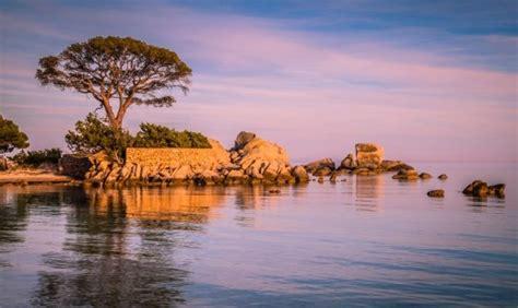 porto vecchio corsica spiagge plage de palombaggia la spiaggia pi 249 in corsica