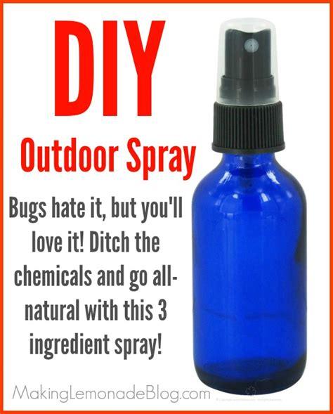 diy insect spray outdoor cing spray bugs it