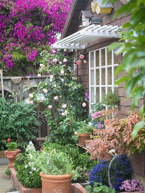 vertical gardens better homes gardens