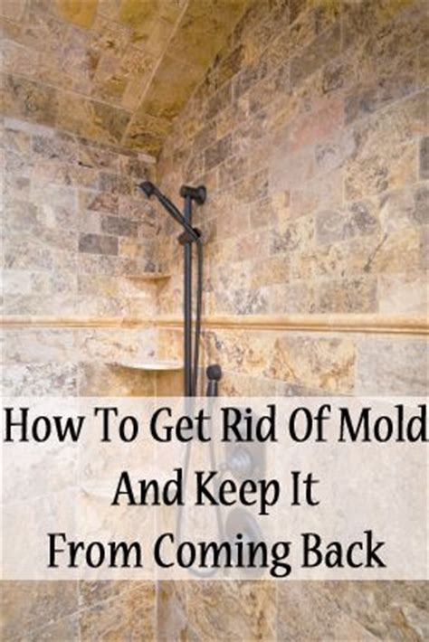 How To Get Rid Of Mould In Bathroom Walls by 25 Best Ideas About Cleaning Shower Mold On