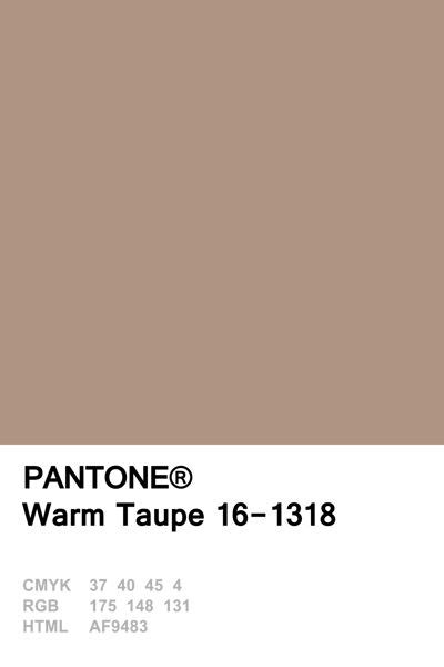 taupe colors best 25 taupe color palettes ideas on taupe