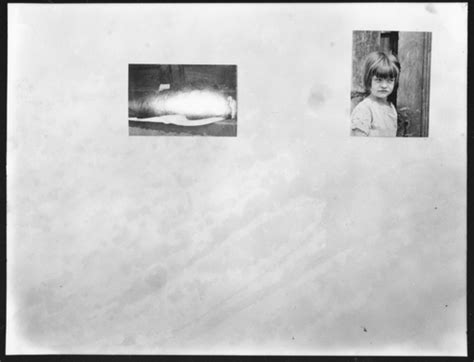 libro walker evans american photographs ph8535