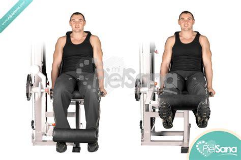 leg extension a casa leg extension o curl de piernas sentado en m 225 quina