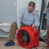 bed bug heat treatment effectiveness blog post page 14