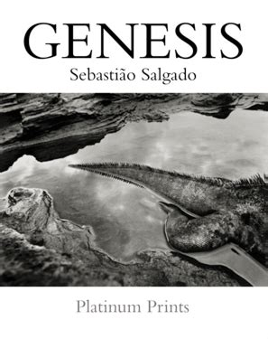 Genesis Search The Genesis Project a look at platinum vs inkjet via salgado s genesis project