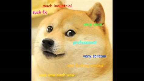 Doge Wow so doge much wow theme song