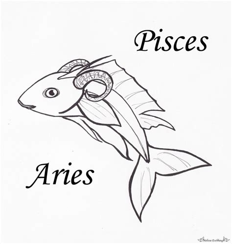 pisces aries cusp tattoo designs best 25 aries pisces cusp ideas on pisces