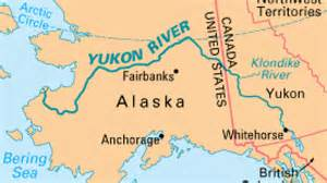 alaska halts 2014 chinook salmon fishing on yukon river