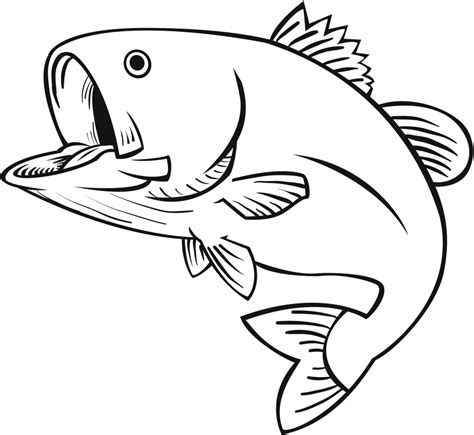 pattern drawing fish drawings of bass fish clipart best