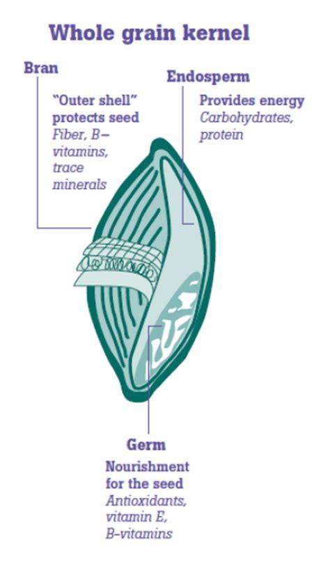 3 nutrients in whole grains whole grains eat smart move more