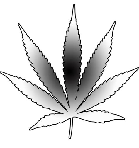 drawn weed leaf stencil pencil and in color drawn weed