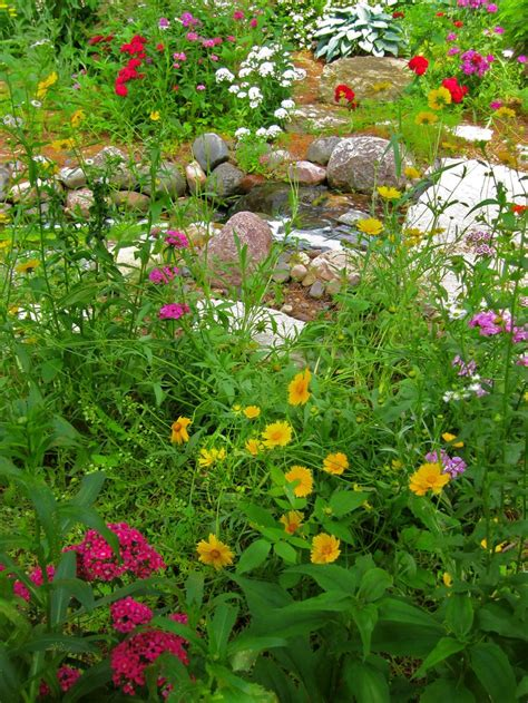 wildflower backyard wildflower garden with stream garden flower beds
