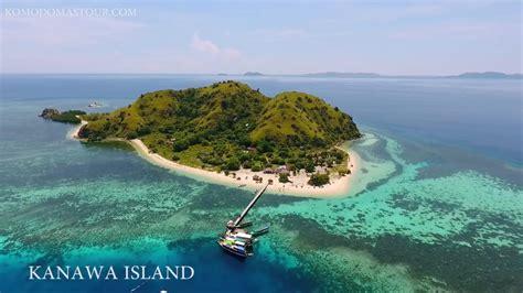 day tours  komodo island  pink beach komodo tours