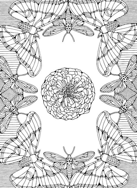 butterfly mandala coloring page butterfly mandala coloring pages coloring sheets pinterest