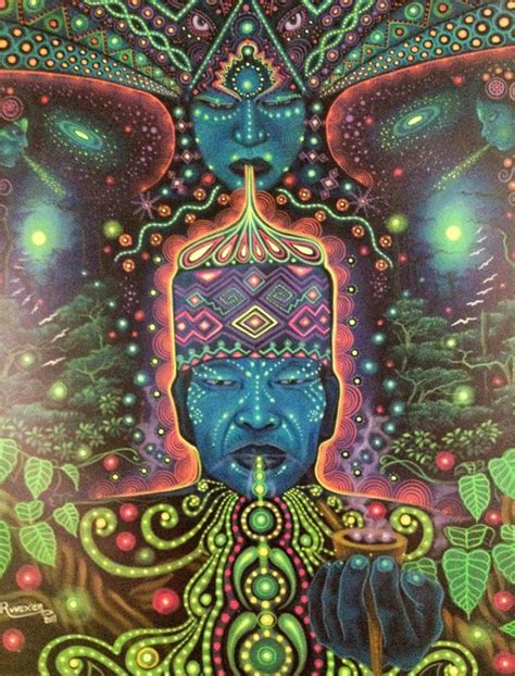 the psychedelic leap ayahuasca psilocybin and other visionary plants along the spiritual path books visionary ayahuasca community sacr 233 of