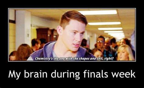 We Know Memes - finals week meme my brain during finals week