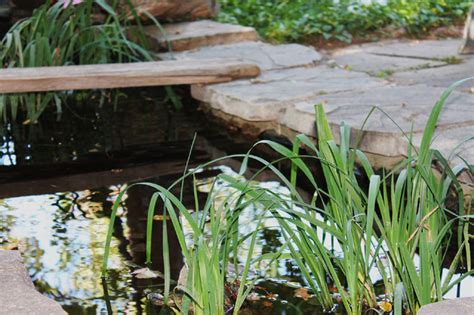 simple backyard ponds 35 backyard pond images great landscaping ideas