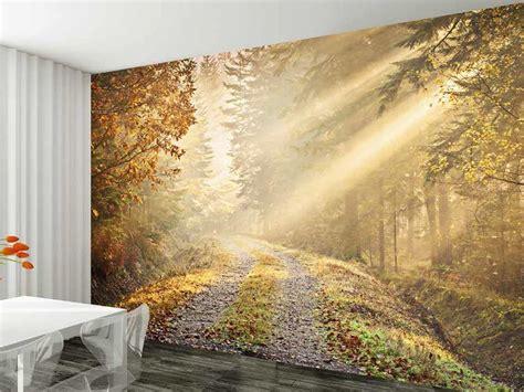Wall Mural Wall Paper mural wallpaper 1024x768 71316