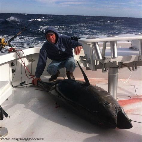 best offshore banks in the world 1000 images about everything fishing on