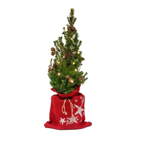 real christmas trees bq decorated small real tree with lights departments diy at b q