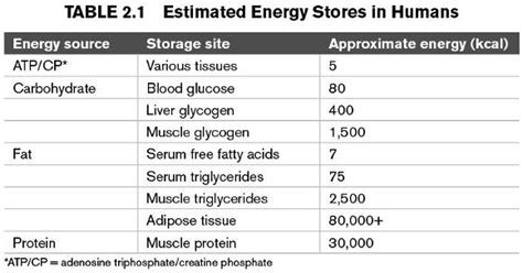 carbohydrates yield how much energy endurance sports nutrition the s fuel sources