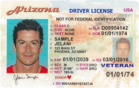 driver license overview