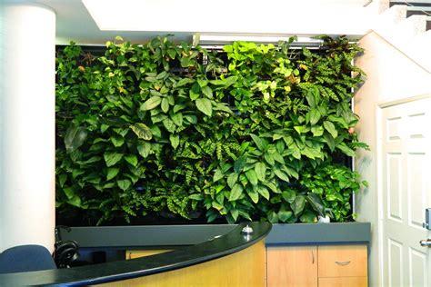 Green Wall Vertical Garden S House