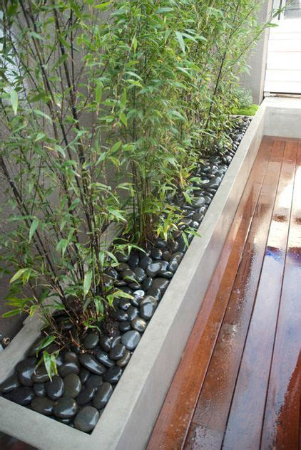 Bamboo Planter Boxes by 1000 Ideas About Bamboo Planter On Planters
