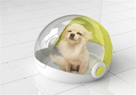 dog house clothing dog house dryer concept by lucy jung tuvie