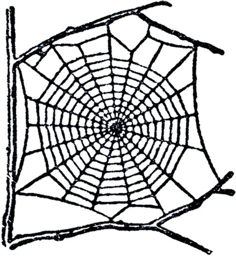 Free Spider Web Clip Art! - The Graphics Fairy Free Clipart On The Web