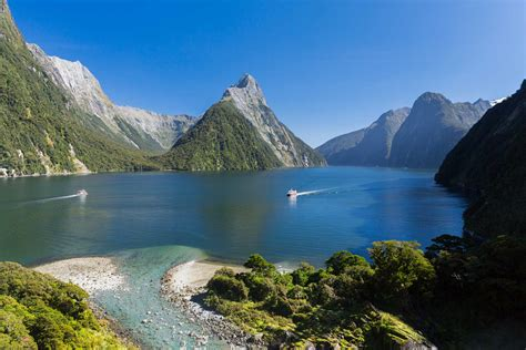 nature cruise milford sound southern discoveries