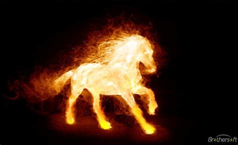 fire horse animated wallpaper fire horse