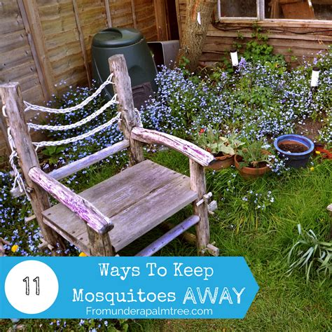 11 ways to keep mosquitoes away