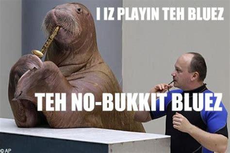Meme Bucket - image 185282 lolrus know your meme