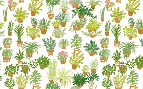 plant background desktop wallpaper plants desktop wallpaper em