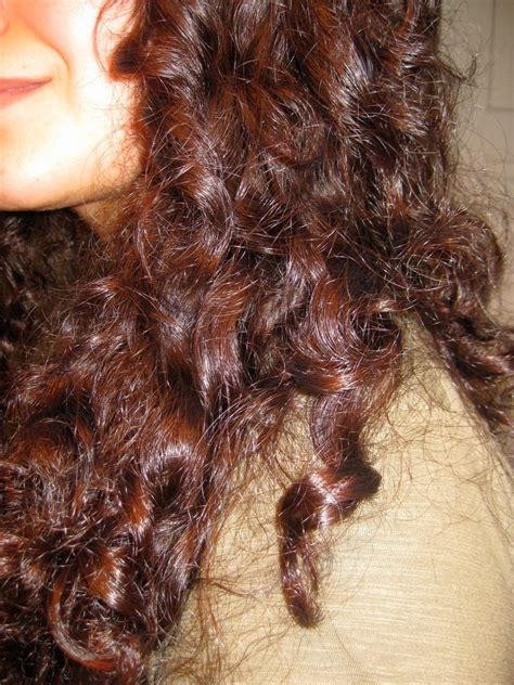Hair Dryer For Curly Frizzy Hair ermelinda behm journal how to curly hair