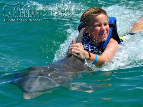 boat ride from miami to dominican republic explorer dolphin swim punta cana tours and excursions