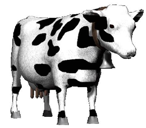 imagenes de vacas sin fondo 6 bonitas y lindas en movimiento imagenes de animales gif