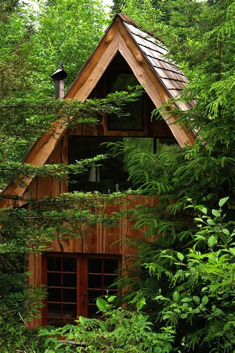 building a small cabin in the woods this amazing forest house was built for just 11 000 with locally found materials