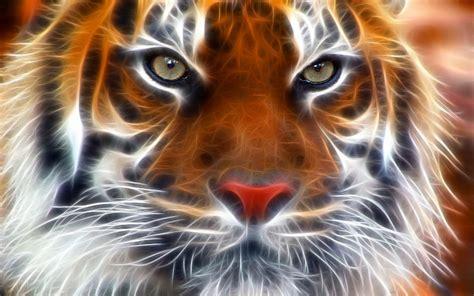 whatsapp wallpaper tiger 3d tiger wallpaper hd 2018 wallpapers hd