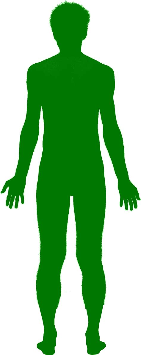 chagne silhouette png file green shadow png wikimedia commons