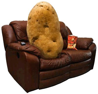 couch potato meaning ielts idiom of the week couch potato