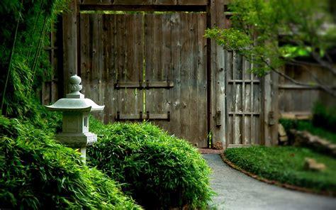 Green Garden by Green Garden Images Hd Desktop Wallpapers 4k Hd