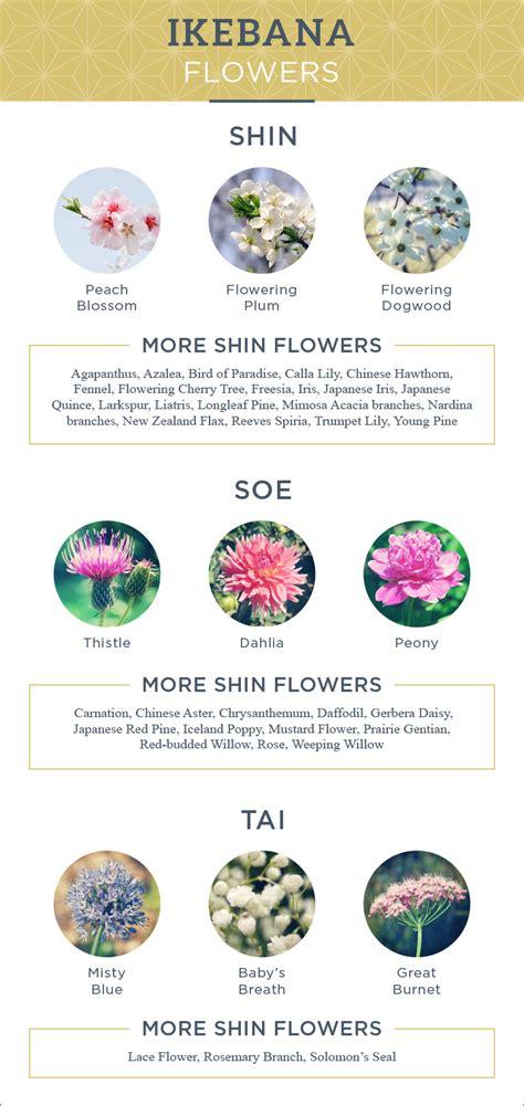flower arranging basics the basics of ikebana surely simple