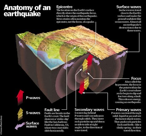 section 8 1 what is an earthquake anatomy of an earthquake the release of megatons of