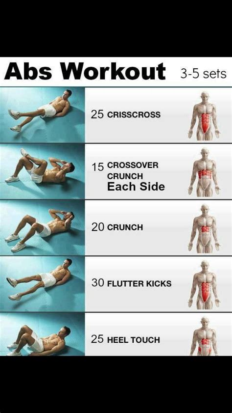 exercises to tone stomach after c section ab stomach workouts shows you what muscles each one