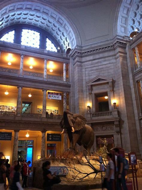 17 Best Smithsonian Dinosaurs Images On Pinterest