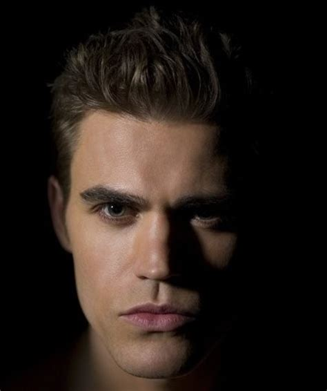 mk the diaries a few words on stefan salvatore